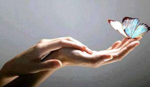 mariposa-y-mano