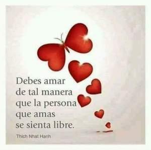 amar-libre